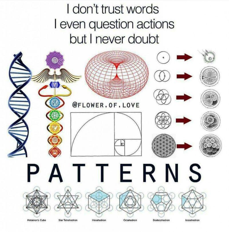 natures patterns